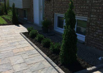Plantation de cèdres et d'arbustes - Aménagement Paysager Goyer - Rive-sud